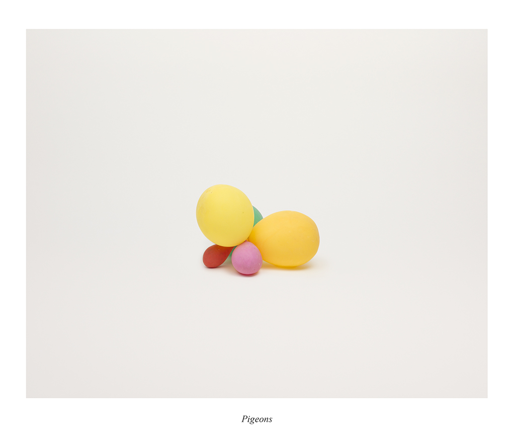 6.Jonna_Kina_Pigeons_from-the_series_Foley_Objects_2013_archival_pigment_print_38x38cm_framed_5